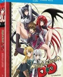 The Shredder: High School DxD
