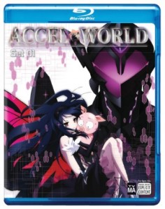 AccelWorld1