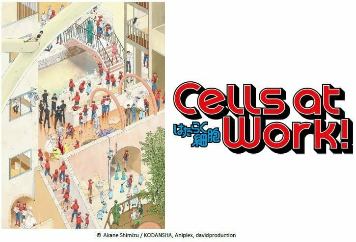 "Aniplex of America Opens English Site for ""Cells at Work!"" Anime"