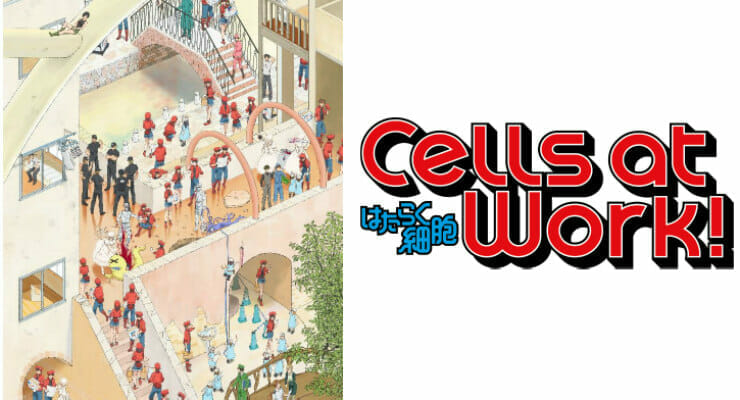 Cells At Work! Anime Gets 4 New Cast Members