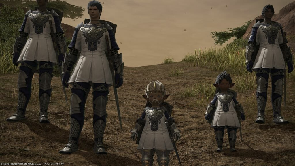 Papashon and the Sultansworn stand, ready for battle in Final Fantasy XIV